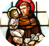 Feast of St Anthony (from St Francis' Church)